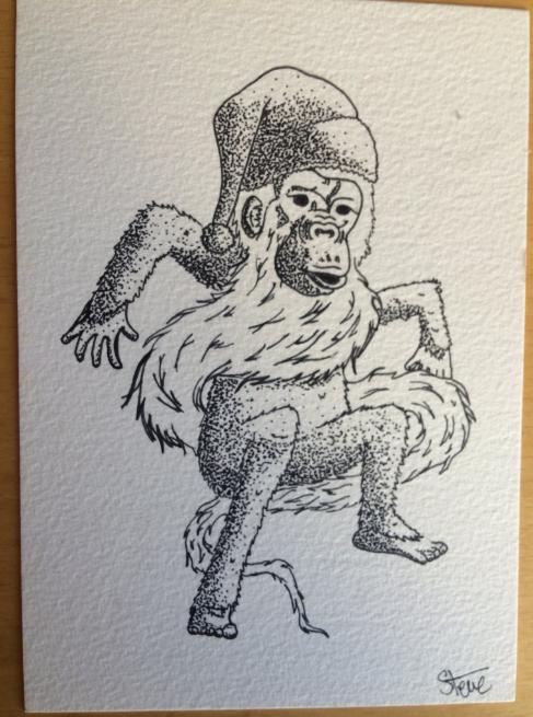 bonobohohoho-steve