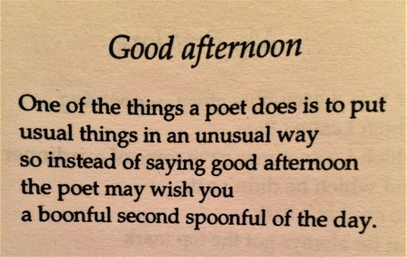 Good afternoon by John Hegley