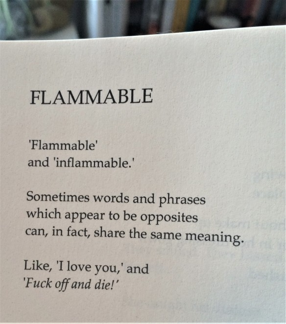 Flammable by Tony Walsh.jpg